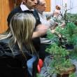 Simone analizza le piante portate dai soci