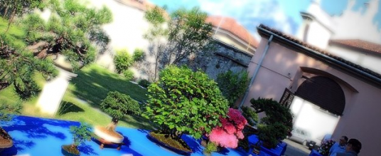 Mostra Bonsai a Castello