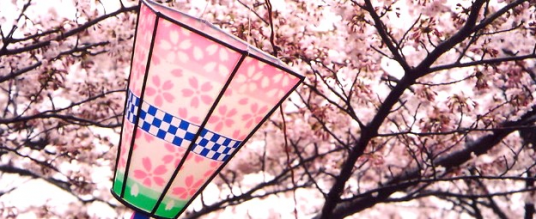 Honami – Ammirare i fiori
