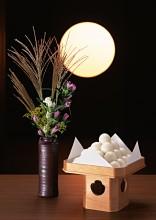 Esposizione di dango erbe e fiori